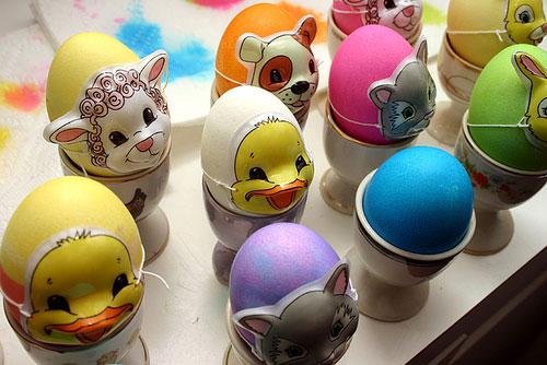 egg15
