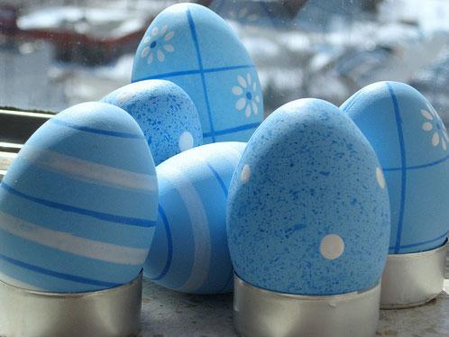 egg26