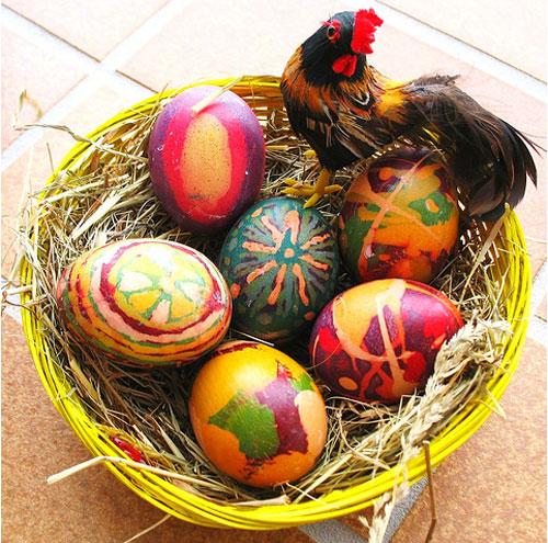 egg28