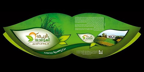ready brochure designs
