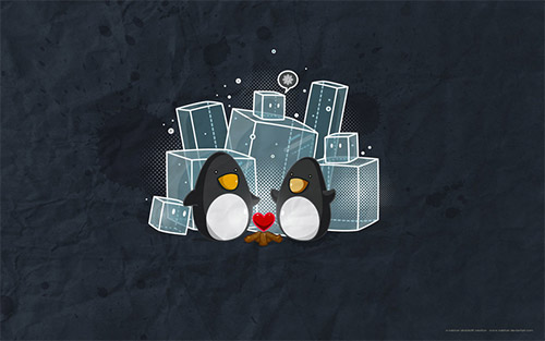 penguin wallpaper character illustration