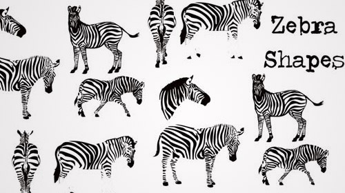free photoshop zebra custom shapes
