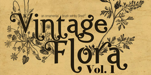 vintage flora photoshop brushes