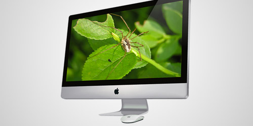 imac photoshop tutorial
