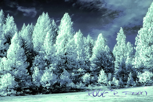 Christmas time Infrared