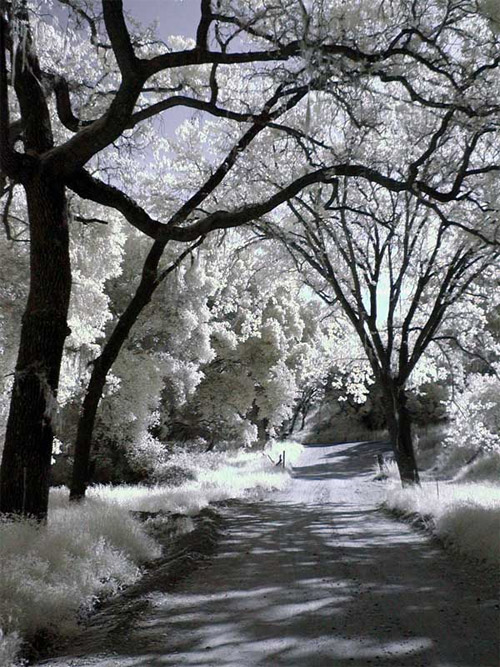 infrared way photo