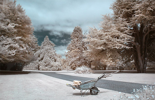 Lonely Wheelbarrow  Infrared