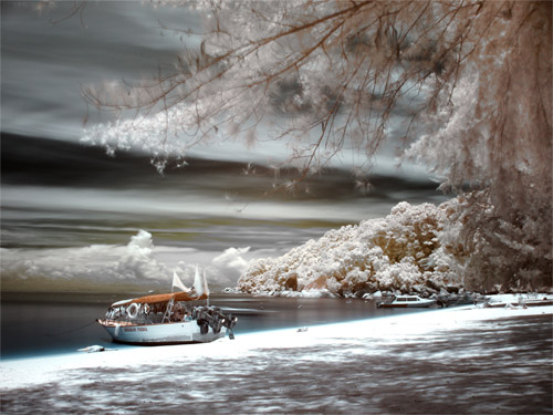 Unique Infrared Photography