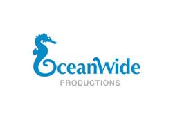 Ocean Wide Blue Logo