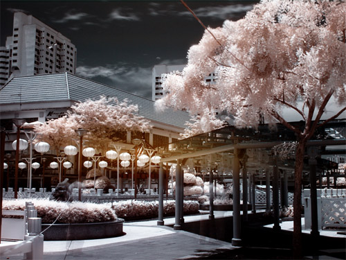 china town infrared  Photo