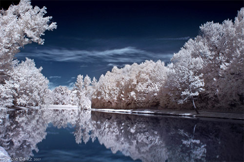 Lake Infrared Photography