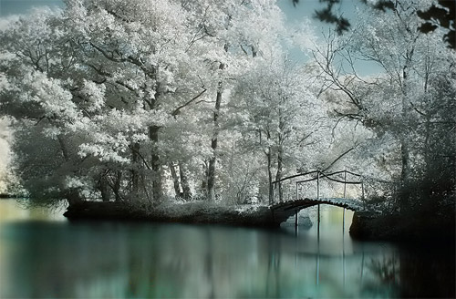 cool Infrared photography