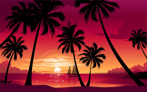 magenta palm beach sunset wallpaper