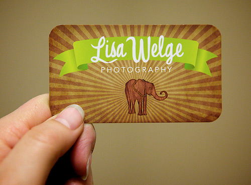 photography elephant round corner business card