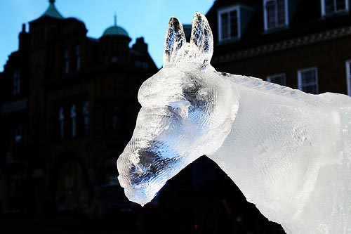 horse head ice sculpture