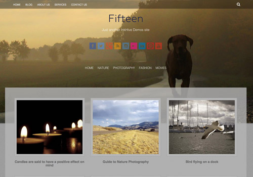 pro photoblog wordpress