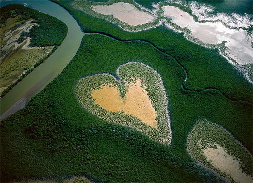 heart aerial photography