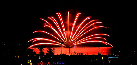 Platinum Fireworks (Grand Exhibition)