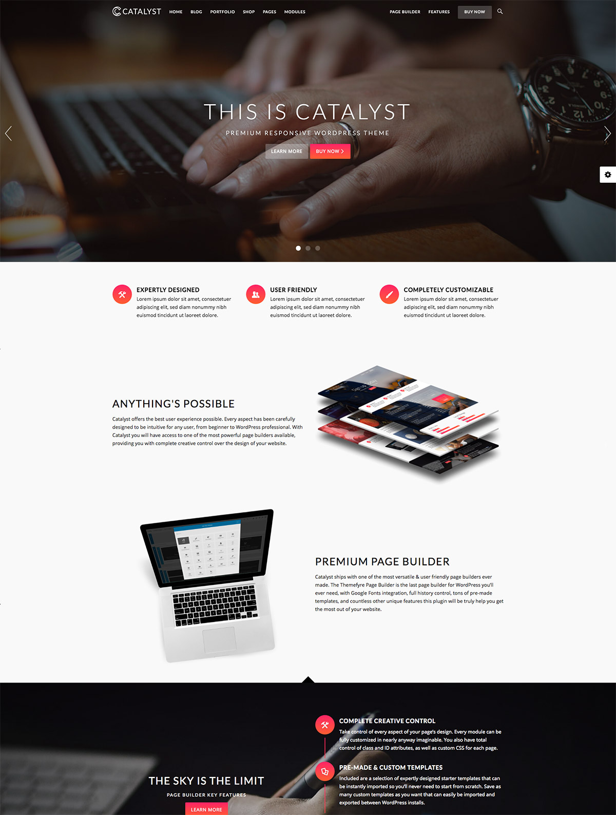 premium wordpress theme