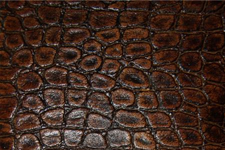 Leather I