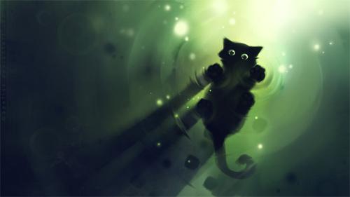 marchin cat