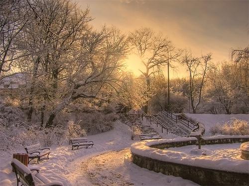 Winter Wonderland in Texas