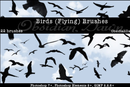 Birds (Flying) Photoshop & GIMP Brushes