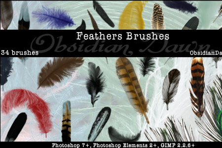 Feathers Photoshop & GIMP Brushes