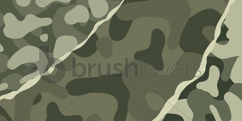 Camouflage brushlovers