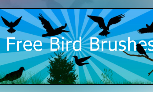 bird free photoshop brushes