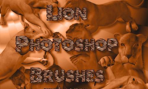 lion brushes free