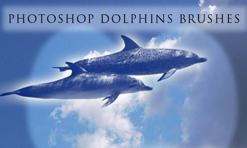 dolphin free photoshop brushes