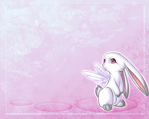 30 Free Heartwarming Rabbit Wallpapers Naldz Graphics