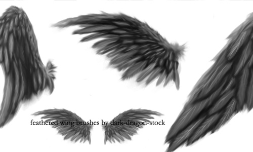 photoshop brush wings