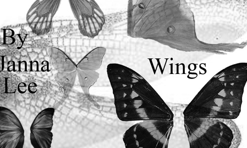 butterfly wings pack