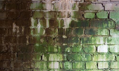 Grimy Brick Wall