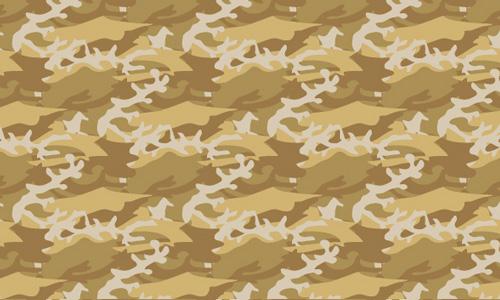 Camouflage Pattern Desert
