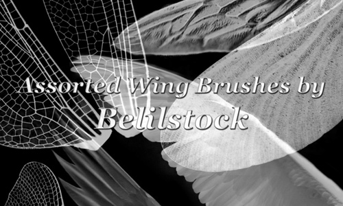 Assorted brush wings
