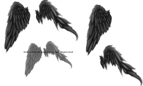 digital brush wings