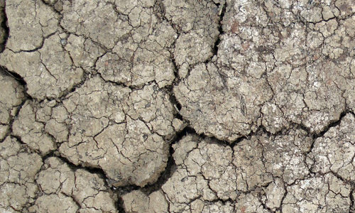 cool ground texture