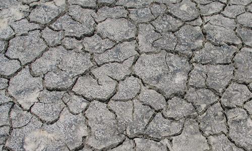 amazing cracked ground texture