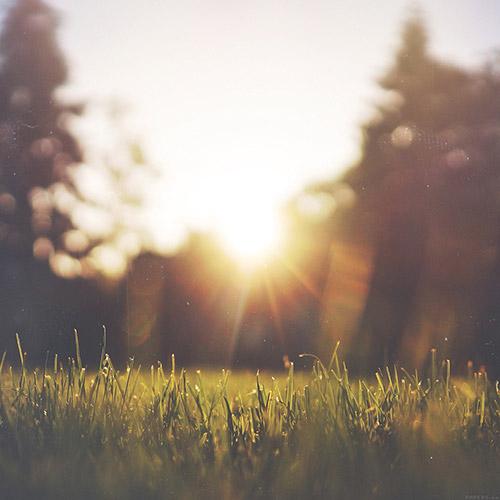 sunshine ipad background