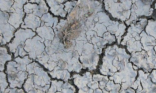 nasty cracks for a ground texture