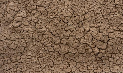 cracked dirt free