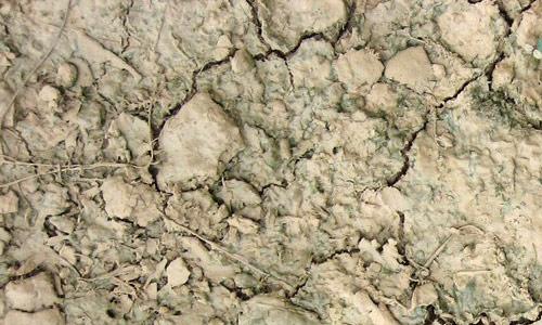 Amazing Ground Cracks for Texture