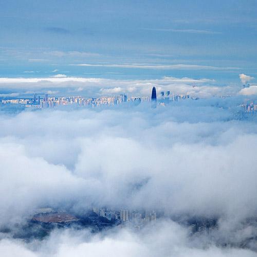 city fog wallpaper