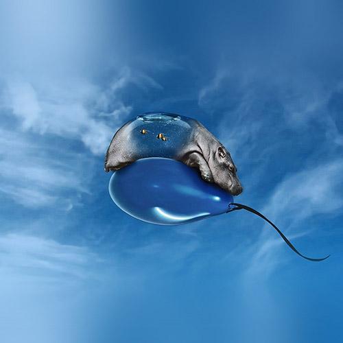 hippo balloon ipad