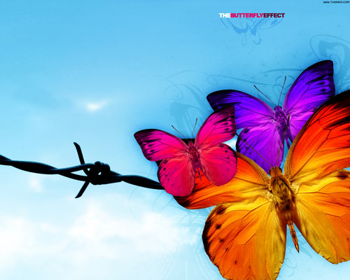 Movie Inspired Butterfly Wallpaper