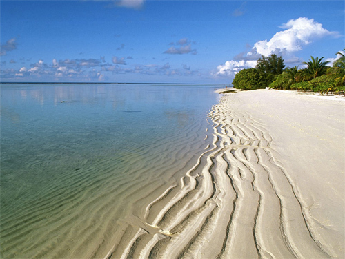 Shoreline Along Ari Atoll, Maldives Islands