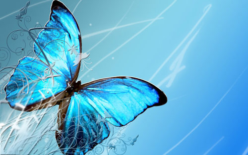 Refreshing Blue Butterfly Wallpaper